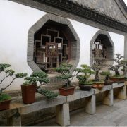 100-years-old-private-courtyard-4